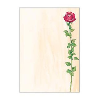 Designpapier A4 90g Rose Bloom 25Bl